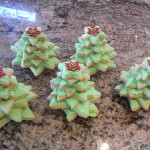 Stacked Christmas Tree cookies tutorial