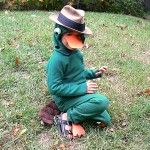 The Perry The Platypus Costume