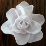 Plastic spoon roses, Slave Leias, cephalopods and more!