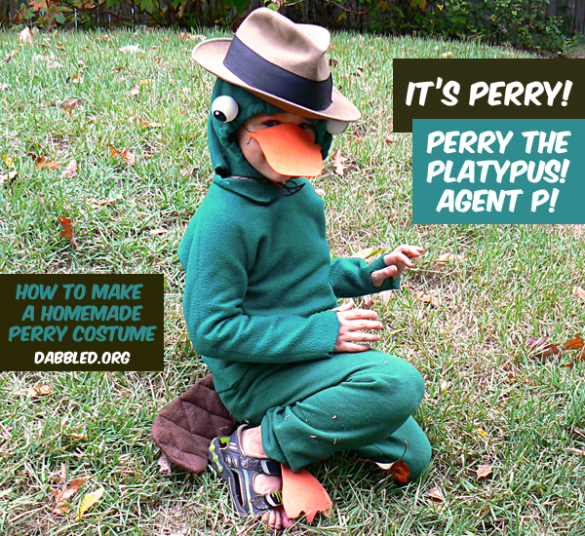 Perry the Platypus homemade costume