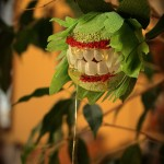 Creepy Houseplants, and H'ween Roundup