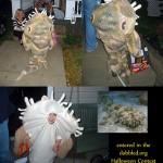 Halloween Feature - Wobbegong Shark Costume