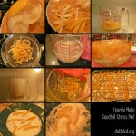 How to make Candied Citrus Peel - A Dabbled Re-run