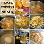 Day 1: Lemon Week - Candied Lemon Slices