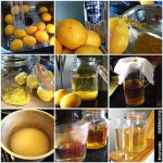 Making Limoncello on dabbled.org