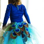 traintocrazy_tutu_costume